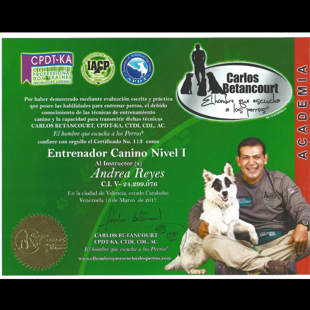 Certificado Andrea Reyes Dog Trainer
