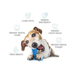 dog's toothbrush